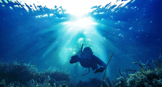 Spearfishing in the waters of Oahu