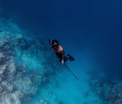 A spearfisherman free dives amongst the reef